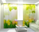 Фотошторы солнечные цветы