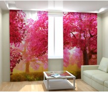 Фотошторы розовой сад