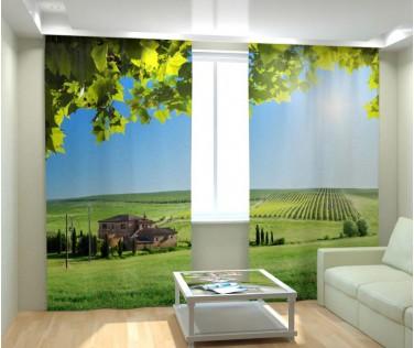 Фотошторы виноградник