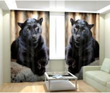 Фотошторы черная пантера