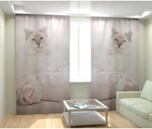 Фотошторы голубоглазый котик
