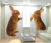 Фотошторы голодные кролики
