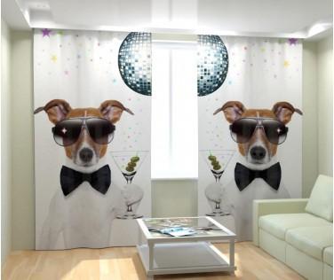 Фотошторы клубный пес