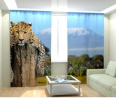 Фотошторы леопард на отдыхе
