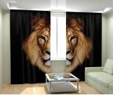 Фотошторы царь животных