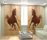 Фотошторы бегущая лошадь