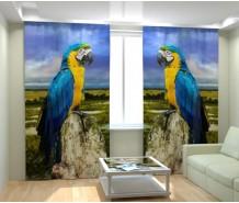 Фотошторы попугай ара