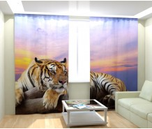 Фотошторы могучий тигр