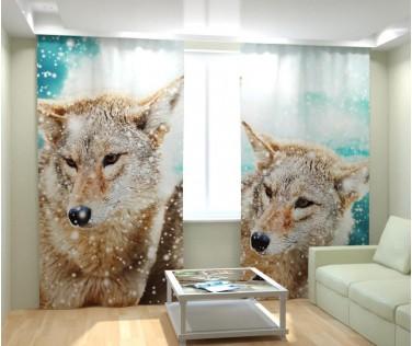 Фотошторы снежные волки