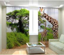 Фотошторы жираф