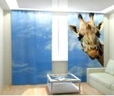 Фотошторы степной жираф